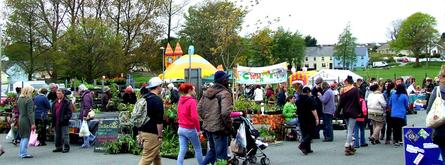 Spring Fest BigPlant sale